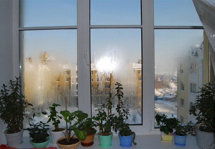 Что делать чтобы не потели окна зимой дома228
